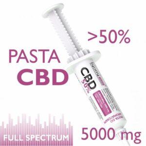 Pasta CBD min. 50% fitozwiązków 5000mg Full Spectrum 10ml Biomi Farm